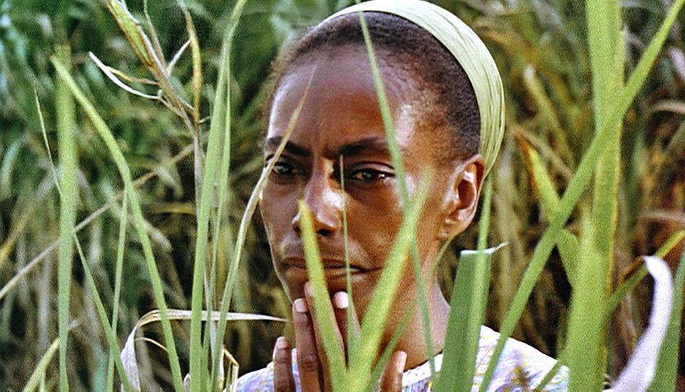 Analysis of Sankofa movie