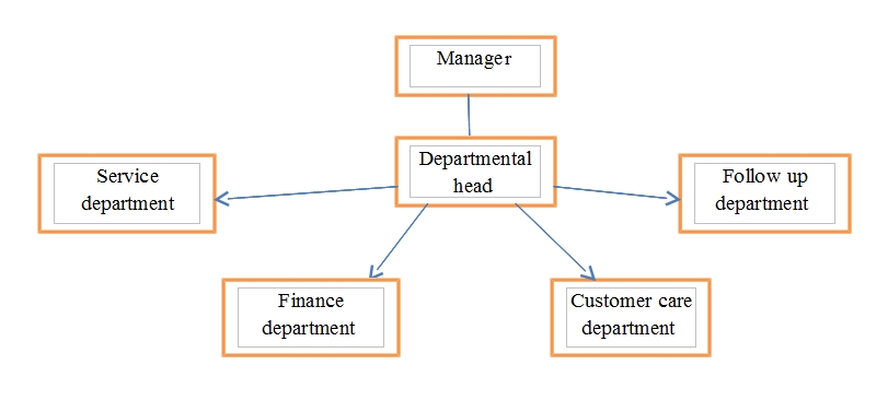 The Structure of the Organization