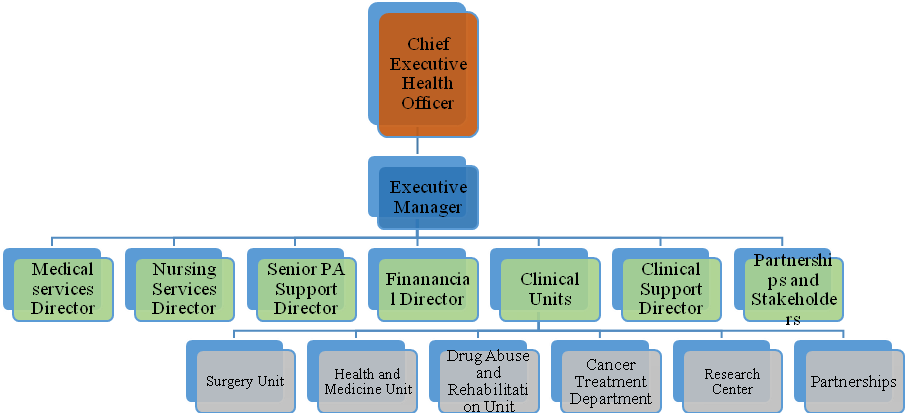 structure of the 21-st-century health solutions